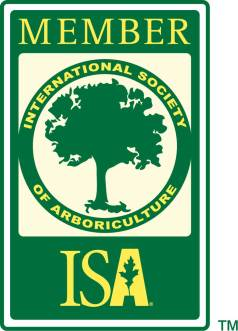 isa_member_logo_for_website_members